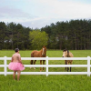 Farm- The Tutu Project for Breast Cancer Awareness
