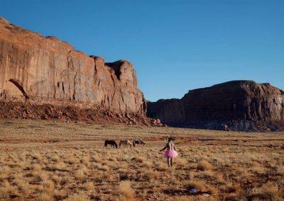 Three Horses. Monument Valley, Utah.