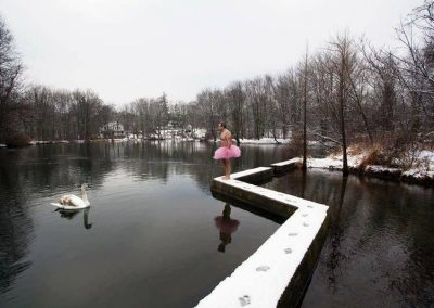 Swan. Saddle River, New Jersey.