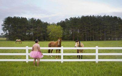 Three Horses. Elmira, Mi