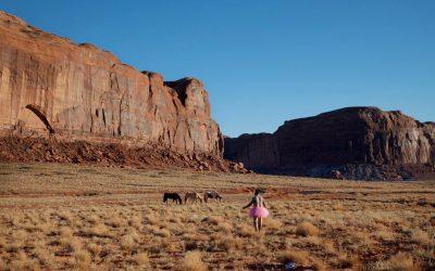 Three Horses. Monument Valley, Utah. 2010